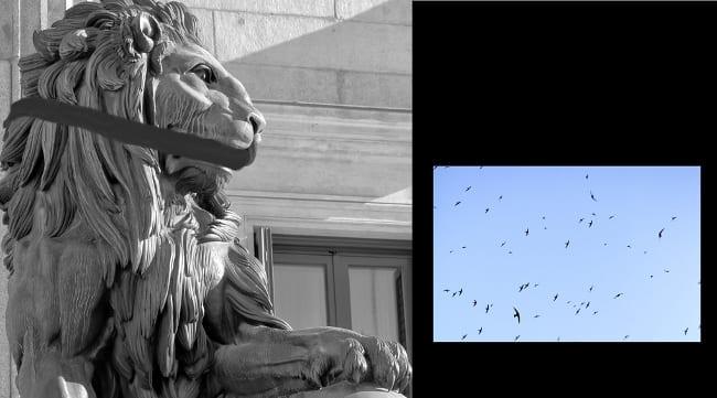 Hasta que los leones no tengan historiadores