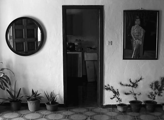 FLOR NO-NADA, de Daniel V. Villamediana